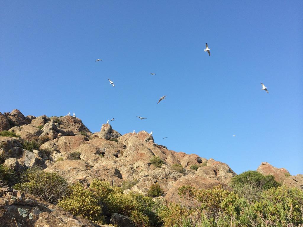 Là dove regnano il vento, i falchi e i gabbiani